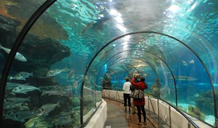L'Aquàrium de Barcelone, Barcelone