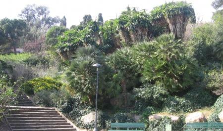 Jardins del Turó del Putxet, Barcelone