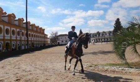 Real Escuela Andaluza de Arte Ecuestre, Jerez de la Frontera