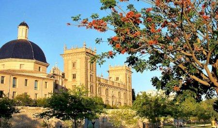 Museu de Belles Arts de València, Sant Pius V, València