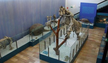 Museum of Natural Sciences, Valencia
