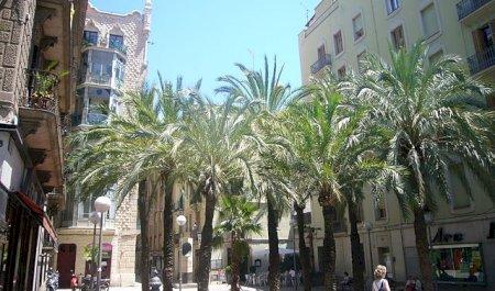 Gràcia, Barcelone