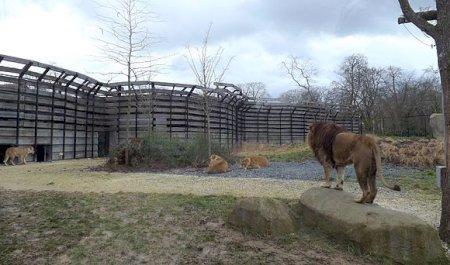 Jardim Zoológico de Paris, Paris